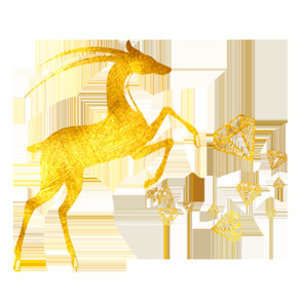 Золотая Антилопа Салон-парикмахерская